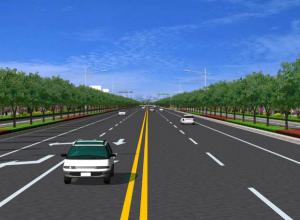 金叶大道道路景观绿化工程招标公告