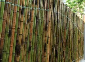园林景观知识:园林景观围墙设计常用材料有哪些 (10)