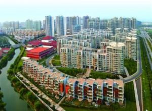 江苏苏州开发区尹山三期景观绿化工程的中标公告