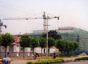 山东青岛泊里镇中心幼儿园室外景观及管网工程中标公告