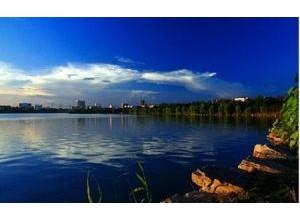 黄冈市遗爱湖风景区管理处园区绿化养护招标公告